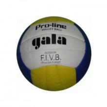Мяч волейбольный №5 Gala Pro-Line 10