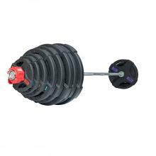 Штанга олимпийская 218 кг (диски с двумя хватами)